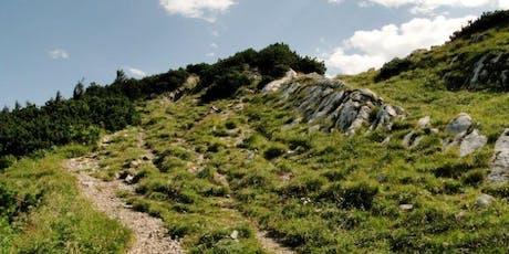 berg:rausch 2-Tageswanderung zum Dürrenstein Tickets