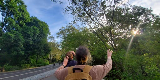 Bird Walk at Turtle Pond and the Ramble