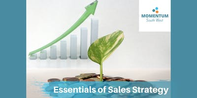 Essentials of Sales Strategy