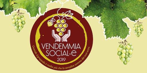 Vendemmia Social-e (15 Settembre, Monfumo)
