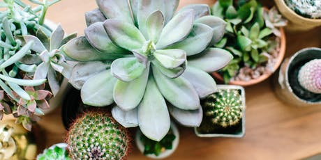 Plant Party - Succulent Workshop at Skinny Dip Charleston tickets