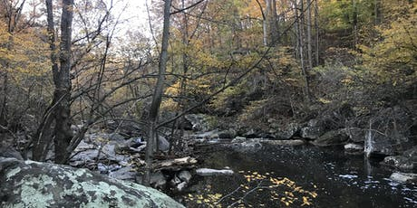 Guided Autumn Nature Walk Along the Paint Branch tickets
