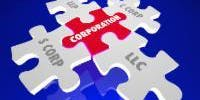 Corporations and LLCs Offer Different Options-C0010