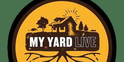 Free Beer Band at My Yard Live