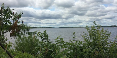 Forest Therapy Walk at Petrie Island tickets