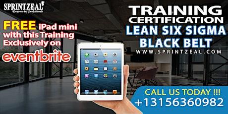 Lean Six Sigma Black Belt Certification Training in Perth tickets