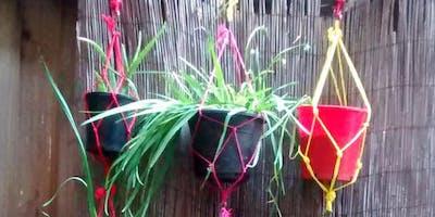 DIY Vegeta Vertical Garden
