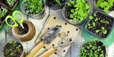 Four Week Mindful Gardening Course