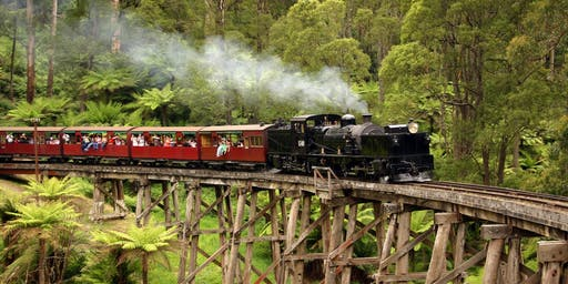 Dandenong Ranges & Puffing Billy - Fun Addicts