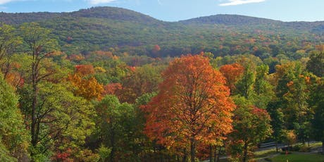 Y85 2019 Preunion: Hudson Highlands Hiking at Black Rock Forest tickets