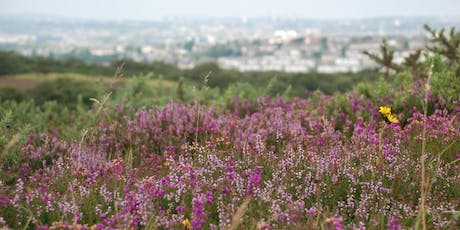 Help the Heather on Kincorth Hill tickets