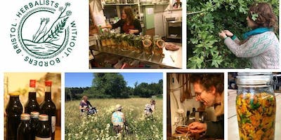 Introduction to Herbalists Without Borders Bristol