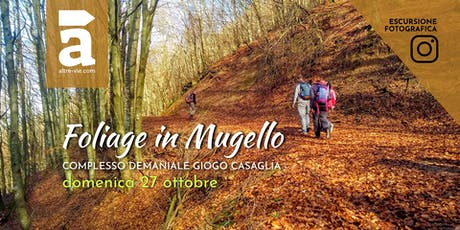 Foliage in Mugello entradas