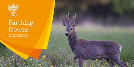 Mammal Walk - Farthing Downs & New Hill tickets
