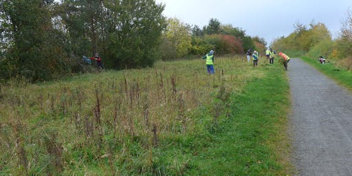 National Cycle Network Scything Task Day, Rosewell, Midlothian