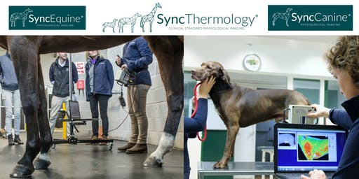 SyncThermology L1 CPD Course - Advanced Physiological Imaging