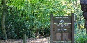 Hainault Forest Fundraising walk- Chigwell Tours