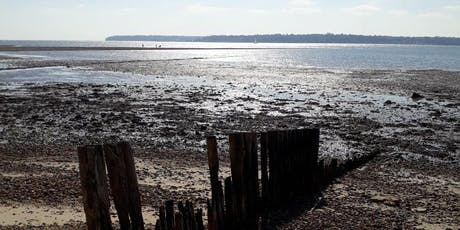 New Forest Walking Festival 2019: Get to Know Our National Park Coastline tickets