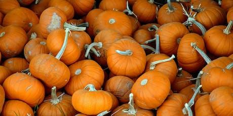 Lil' Pumpkin Dash tickets