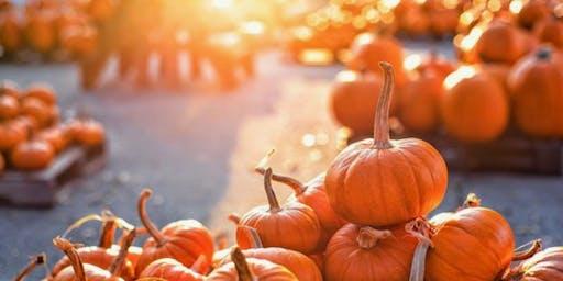 Pumpkin Patch Minis