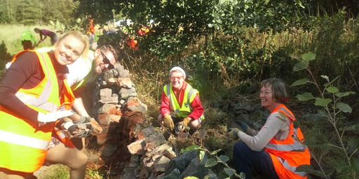 Dry stone walling course - FREE!