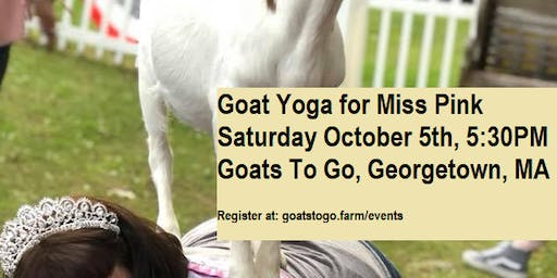 Charity Goat Yoga & Sangria Tasting for Miss Pink