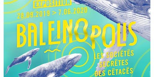 Vernissage Baleinopolis, les sociétés secrètes des cétacés