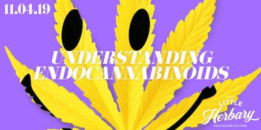 Understanding Endocannabinoids