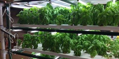 Gro-op Vertical Farming Class at the Co-op!