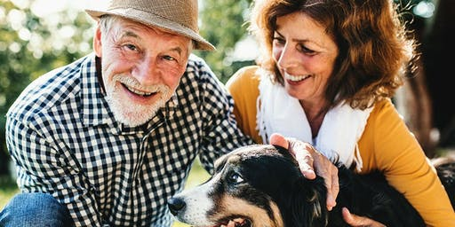 Smart Strategies for a Successful Retirement