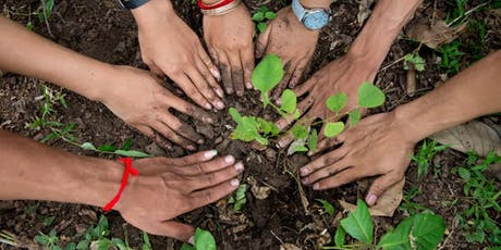 Kilvey Hill tree planting event! tickets
