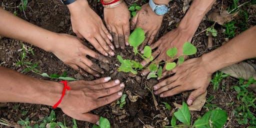 Kilvey Hill tree planting event!