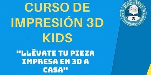 CURSO DE IMPRESIÓN 3D KIDS