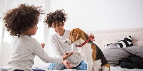 Innovations in Supporting Domestic Violence Survivors with Pets tickets