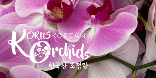 Korean Orchid Festival - US Debut of the Korean Orchid!