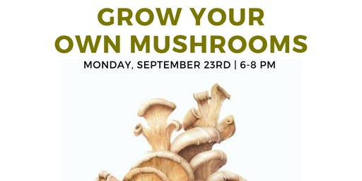 Grow Your Own Mushrooms!