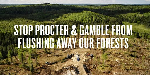 Stop Flushing Our Forest: Campaign Kickoff  Meeting!