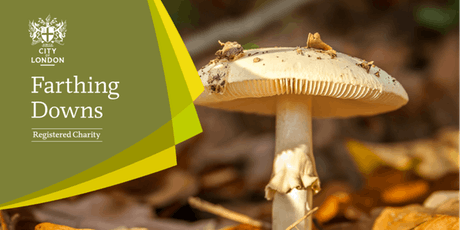 Fungal Foray - Farthing Downs and New Hill tickets