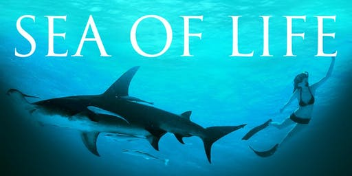 Sea Of Life Film - A UN Climate Action For Peace Screening