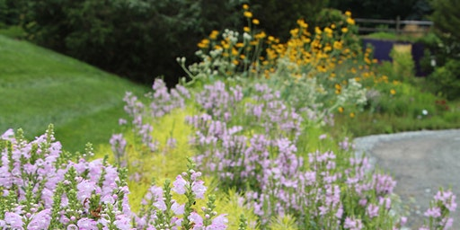 Designing Plant Communities  for (More)Resilient Landscapes, Workshop