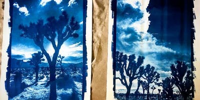 Make Sun Prints (Cyanotypes) in Joshua Tree