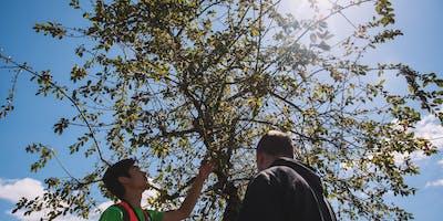 Gresham Trees and Health Symposium