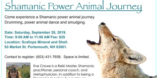 Shamanic Power Animal Journey with Eve Crowe