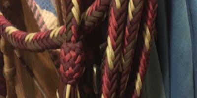 Beginning Western Braiding