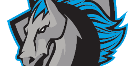 Syracuse Stallions vs. St. Louis Spirits tickets
