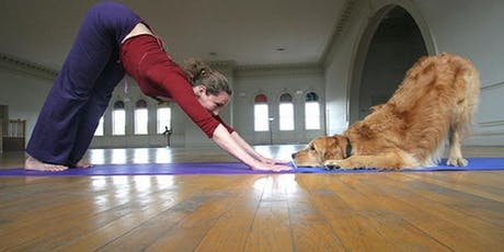 Puppy Yoga! - Benefiting Buckeye ACD Rescue tickets