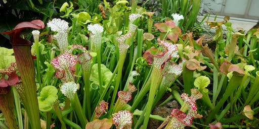 Carnivorous Plant Exchange with Botanica Philadelphia