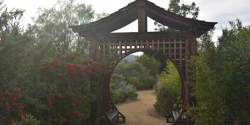 Soul Driven Success Retreat in Ojai