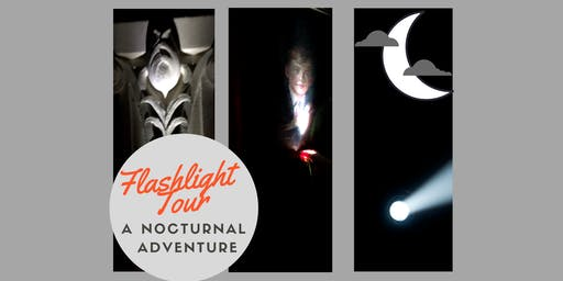 Flashlight Tour, a Nocturnal Adventure