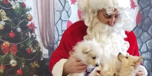 FREE Santa photos provided by Charlotte Black Dogs